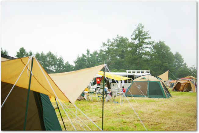 たくさんのテントが張られたオートキャンプ場の様子