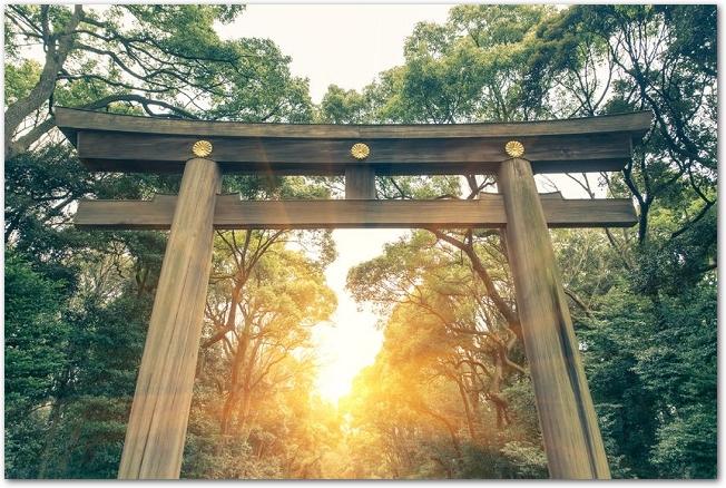 明治神宮の鳥居の向こうから太陽が昇っている様子